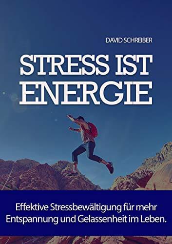 Stress ist Energie: Effektive Stressbewältigung für mehr Entspannung und Gelassenheit im Leben.